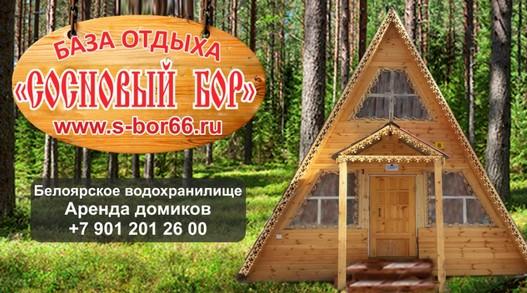 sosnovyi bor.jpg